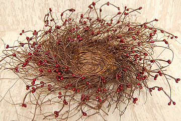 """Berry Bird Nest 10"""""""