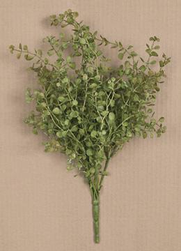 """Peppergrass 21"""""""