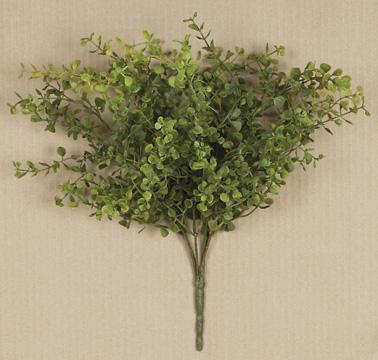 """Peppergrass 14"""""""